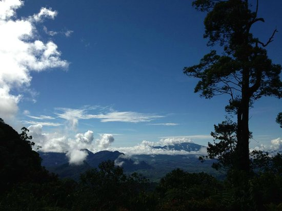 Borneo Highlands Resort:                   Views from the Kalimantan Border