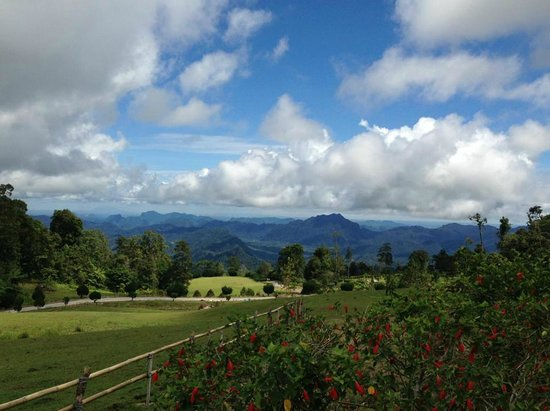 Borneo Highlands Resort:                   Views from the optional tour
