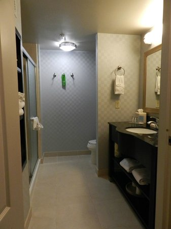 Hampton Inn Carlsbad-North San Diego County:                   Bathroom