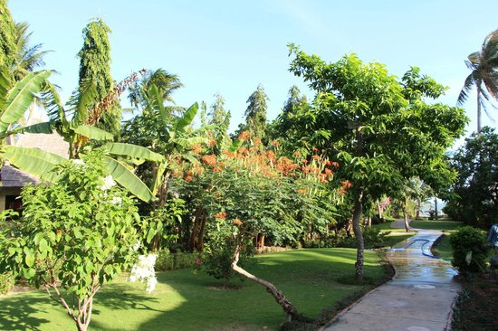 Bao Quynh:                   The beautiful gardens