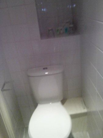 Heathlands Hotel Bournemouth: Toilet (again sorry!)
