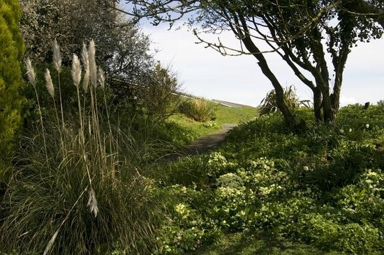 Delabole, UK: The &quot;Dell&quot;