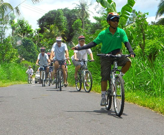 Greenbike Cycling Tours