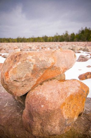 Pocono Mountains Region, :                   View of Boulder Field