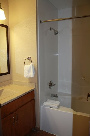 Falcon Point Resort:                   Bathroom
