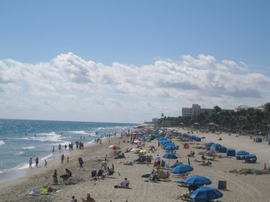Wyndham Deerfield Beach Resort:                   deerfield beach