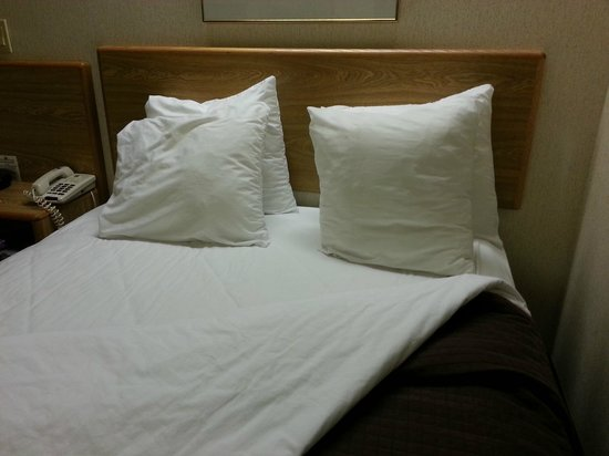 Sleep Inn North:                                     Curiously small pillows on beds