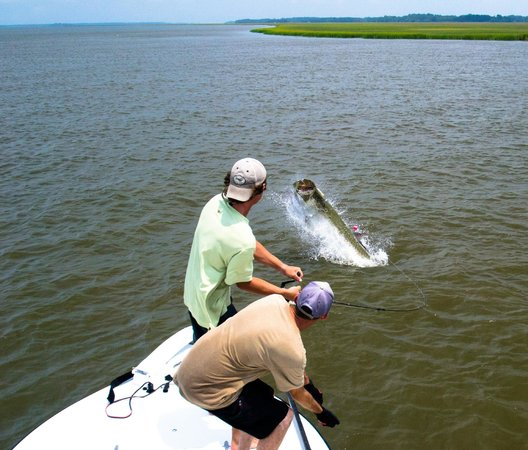 Fighting a charleston tarpon for Fishing report charleston sc