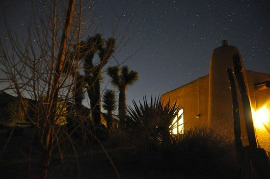 Desert Lily:                                     Enjoying the starry night from the patio out back