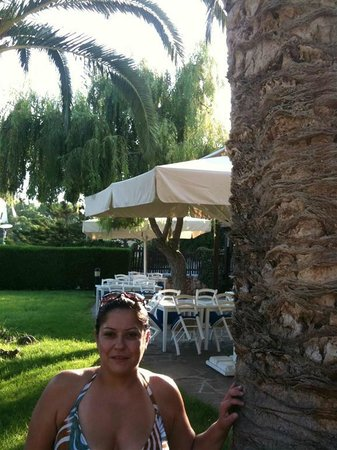 Mediterranean Beach Hotel:                                     The garden