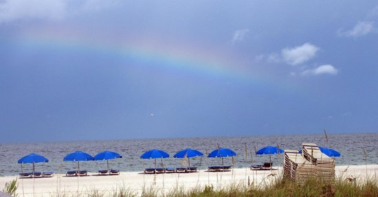 Surf Club:                   A beautiful raninbow on the beach