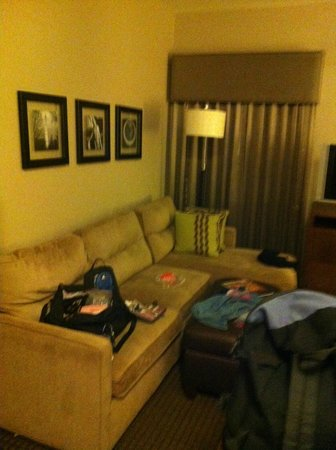 HYATT house Sterling/Dulles Airport-North: Living room