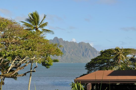 Paradise Bay Resort Hawaii:                   Amazing view !