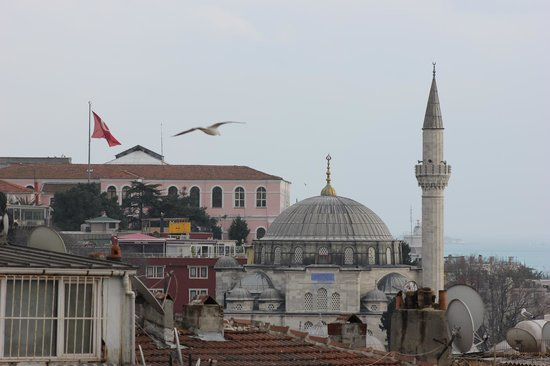 Aziyade Hotel:                   The view from my room at the Marmara Sea, Sokully Paşa Camil and a seagull and