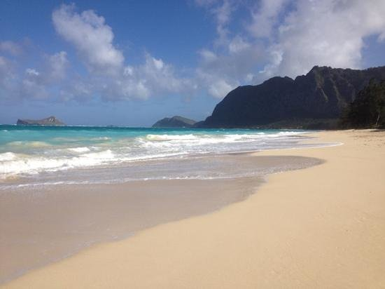 Hale &#39;Nalo Beach Rentals:                   this is 50 yards from where you sleep
