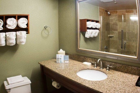 Hampton Inn Miami-Coconut Grove/Coral Gables: Guest Bathroom