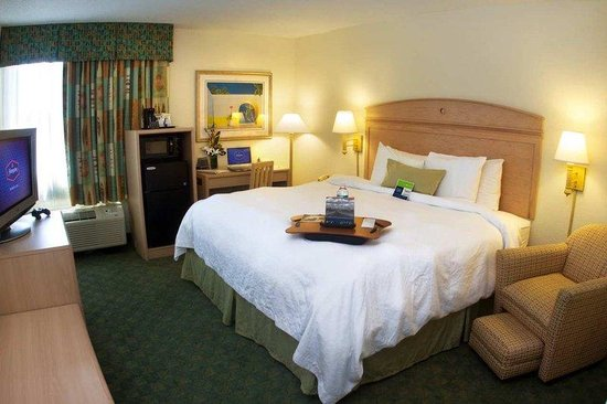 Hampton Inn Miami-Coconut Grove/Coral Gables: One Double Bed