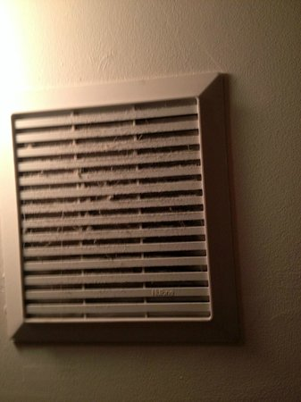 A Painted Lady Inn:                                     Bathroom vent fan