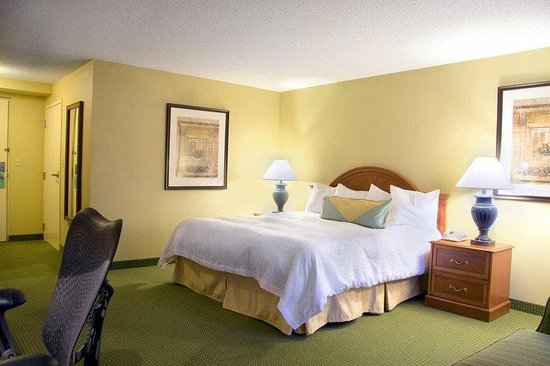 Hilton Garden Inn Saratoga Springs: King Accessible Guestroom