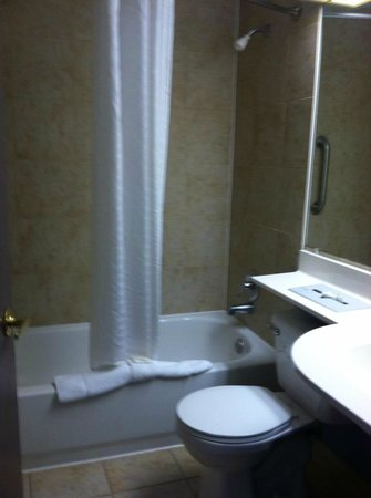 Microtel Inn by Wyndham Lexington: GUEST ROOM BATHROOM