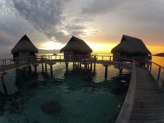 Sofitel Moorea Ia Ora Beach Resort:                   Early Morning Sunset