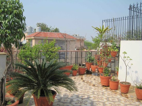 Ahtushi's Bed & Breakfast:                   The lovely roof terrace