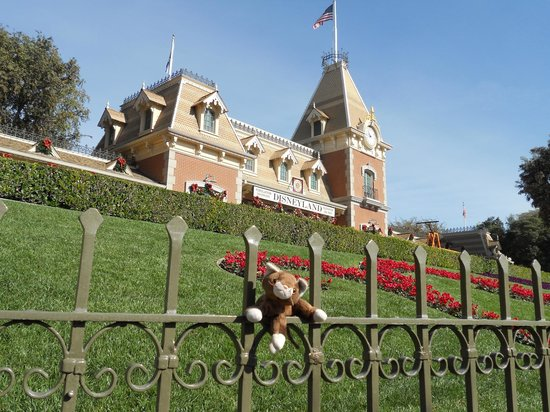 Ramada Plaza Anaheim Resort:                   Our pet Ben at Disneyland