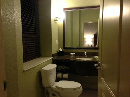 Hilton Garden Inn Toronto/City Centre: Bathroom
