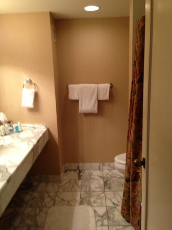 Omni Mandalay Hotel at Las Colinas : Bathroom