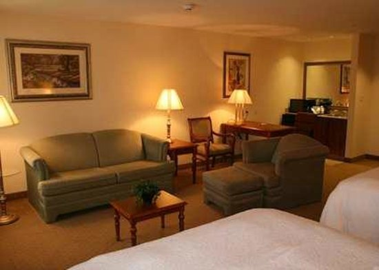 Hampton Inn &amp; Suites College Station / US 6-East Bypass: Living Area