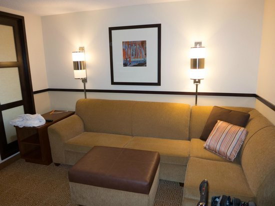 Hyatt Place Mt. Laurel: Pullout sofa