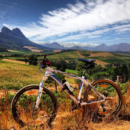 Stellenbosch, Sydafrika:                                     Great Views