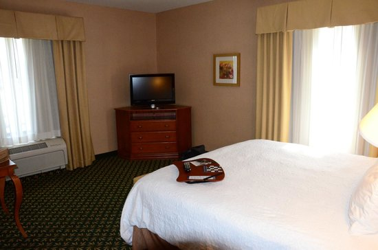 Hampton Inn & Suites Windsor - Sonoma Wine Country:                   TV & King bed