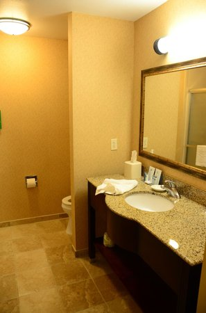 Hampton Inn & Suites Windsor - Sonoma Wine Country:                   Bathroom vanity
