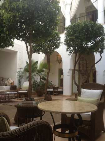 Riad Camilia:                   An oasis of calm from the bustling medina