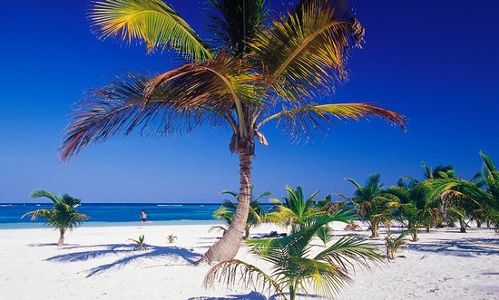 Akumal 38 Reasons To Visit Tripadvisor Best Travel Amp Tourism For Akumal Mexico