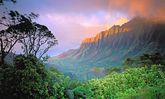 Kauai, Hawaï : Photo provided by ©4Corners