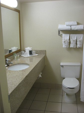 Holiday Inn Fayetteville I-95 South: Bathroom with new paint and counter/sink, but everything else appears original to hotel