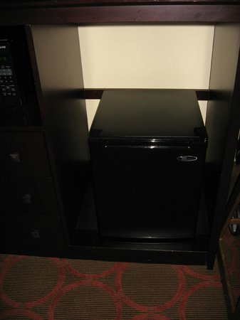 Holiday Inn Fayetteville I-95 South: Very small mini-fridge with space for a microwave that didn&#39;t exist