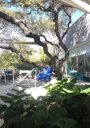 Kimber Modern Hotel:                                     Under the tree