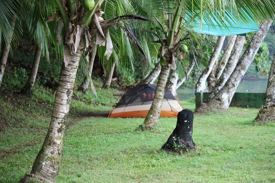 Saladero Eco Lodge:                   A View of my Camping Area