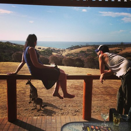 Lathami Lodge:                                     View from balcony