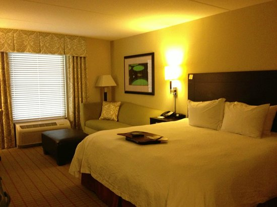Hampton Inn & Suites Gainesville-Downtown:                   King Room