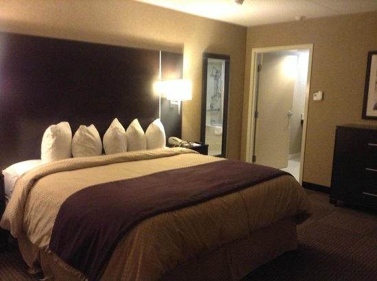 Comfort Suites & Conference Centre Sault Ste. Marie:                   The palatial bedroom with swimming pool sized bed, large bathroom attached