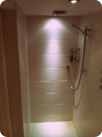 Lorne House:                   The wet room