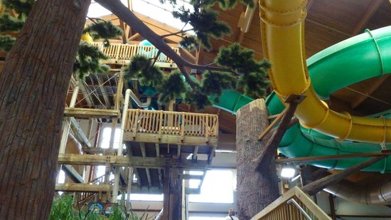 Timber Ridge Lodge & Waterpark:                   Waterpark area