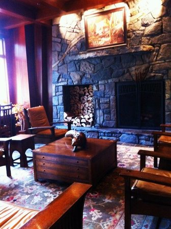 Fox Hotel & Suites:                   The gorgeous lobby