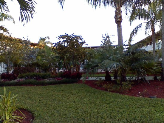 ‪‪Rodeway Inn & Suites Fort Lauderdlale Airport/Cruise Port‬:                   garden area