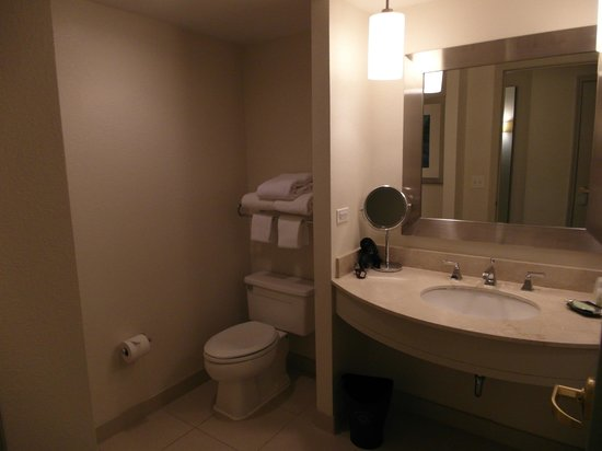 Westin Tampa Harbour Island: View of the bathroom