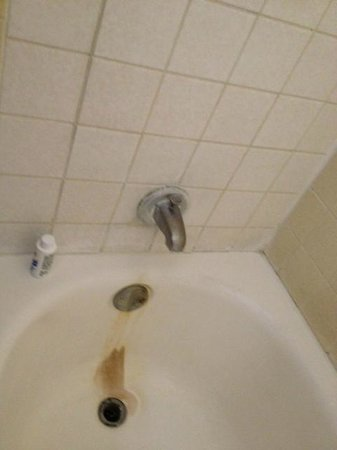 Motel 6 Tucson Airport:                   Look at this tub, how is that $100/night?